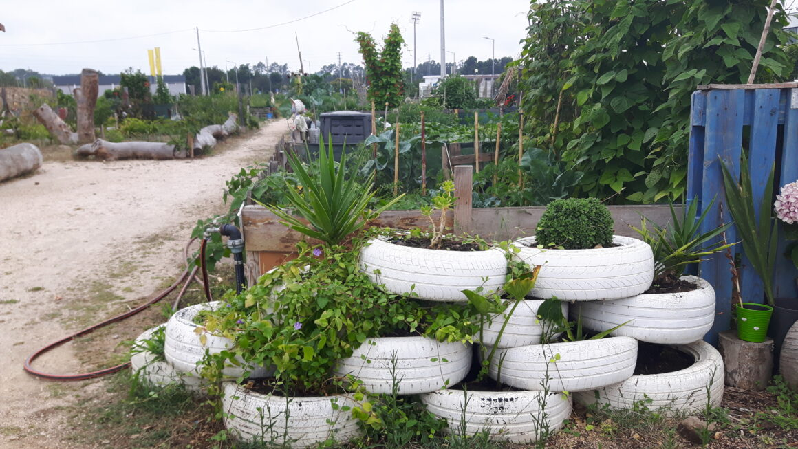 France: Shared orchard in Castries in July 2019